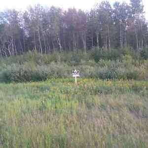 32 acres on Hwy 1 service rd- Prawda, Mb- 30 Kms to Falcon Lake