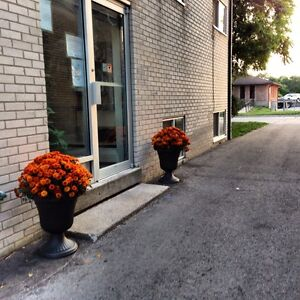 One Bedroom Apartment - All Inclusive Available London Ontario image 5