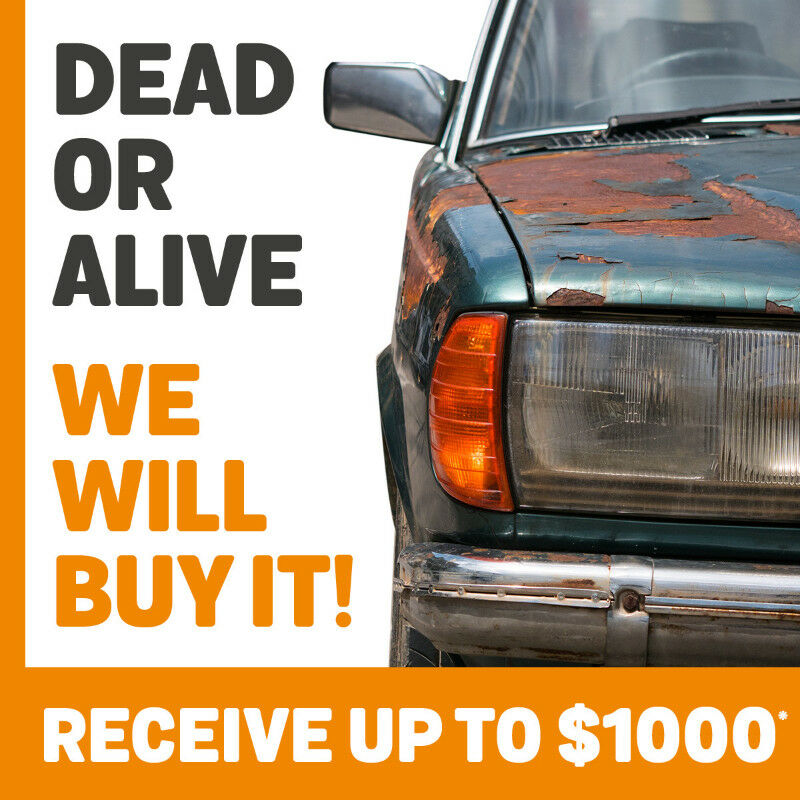 Dead or alive, we will buy it CASH! Top Cah for your scrap car ...