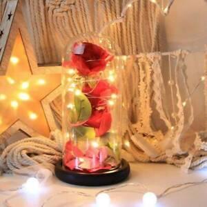 LED Wedding Valentine's Day Romantic Gift Enchanted Forever Rose Sydney City Inner Sydney Preview