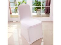 Universal white lycra chair covers x 500