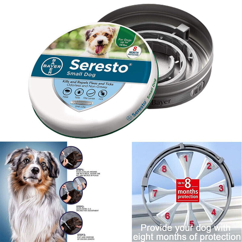 Seresto Bayer Flea And Tick Collar For Small Dog Up To 18lbs 8 Months Protection