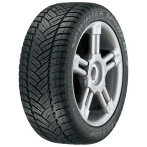 Snow tires  Dunlop 195 /60R/ 15) Two