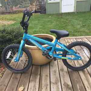 Norco youth bike