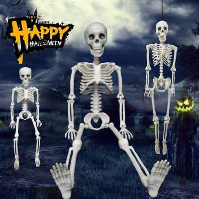 Posable Skeleton Halloween DIY Decor Scary Man Bone Creepy Prop Party - Halloween Prop Diy