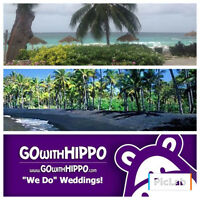 Destination Wedding and Honeymoon Specialist-Great deals on now!