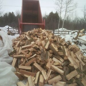 Buy Next Year's Firewood...At Half Price! Peterborough Peterborough Area image 4