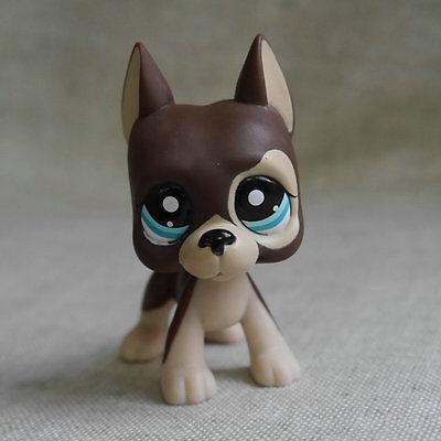 Brown Great Dane pubby dog Action Figure LPS mini  LITTLEST PET SHOP
