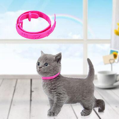 Flea Collar Pet Cat Kitten Dog Adjustable Rubber Necklace Anti Tick Pest Control