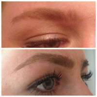 Eyebrow MicroBlading Artistry- Limited Time Introductory Offer!