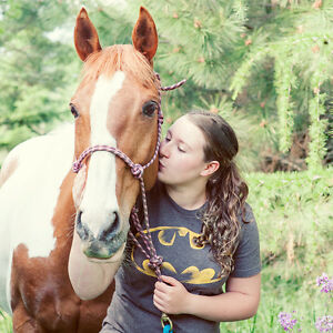 18-year-old registered paint gelding.