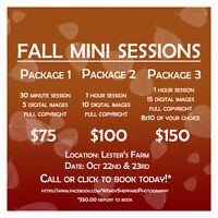 NOW TAKING BOOKINGS FOR FALL SESSIONS