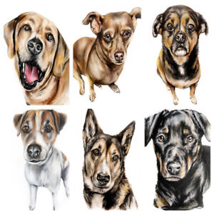 Local Artist-Pet Portraits, Murals, and more