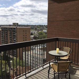 1 Bedroom Apartment Downtown Southwest (Spacious)