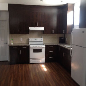 AVAILABLE IMMEDIATELY NON SMOKING BASEMENT APARTMENT IN NE