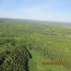 STUMPAGE FOR SALE ON QUIRK ROAD NEAR SUSSEX, NB