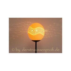 Strauseneilampe-Lampenschirm-Straussenei-Stehlampe-Lampe-1-Sternengurtel-Afrika