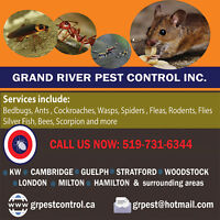 GRPC-Affordable & Reliable Pest Control Services in KW + area