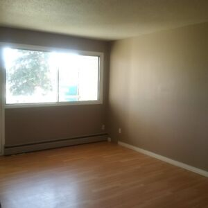 Newly renovated 1 bedroom with free internet for $849/month