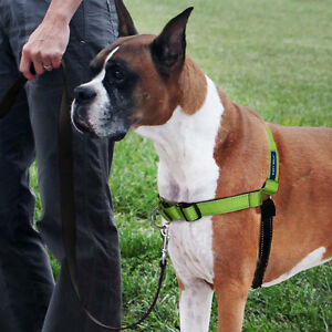 Delux Easy walk No pull harness, Large, Petsafe