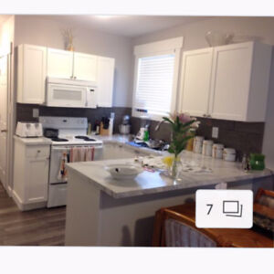 One room in a two bedroom basement suite for rent