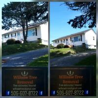 Willsaw Tree Removal