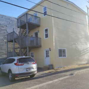 COMPLETELY RENOVATED 2 BDRM ADELAIDE ST
