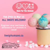 Bake for the Animals - A Fundraiser for the Humane Society