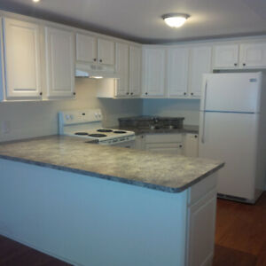 Clean, Open, Spacious, 1 Bdrm Basement walk out, Large Kitchen