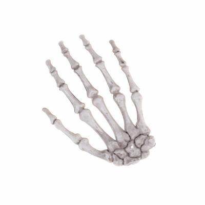 Scary Props Esqueleto del cráneo de Halloween Hueso de la mano humana (Huesos De La Mano Halloween)