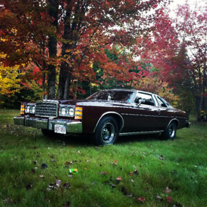 Looking for a motor for my 1976 ford custom 500 LTD