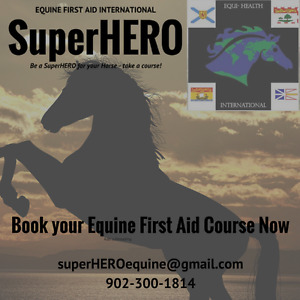 Equine First Aid Courses Offered Now!
