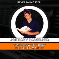 Formation pour apprendre à trader / Learn how to trade Forex