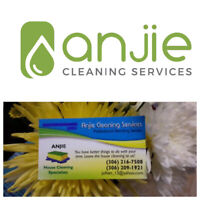 Move out/in and House Cleaning Specialist