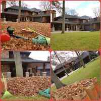 Fall Yard Clean UP/ Leaf Clean Up/Leaf Raking/ Leaf Removal
