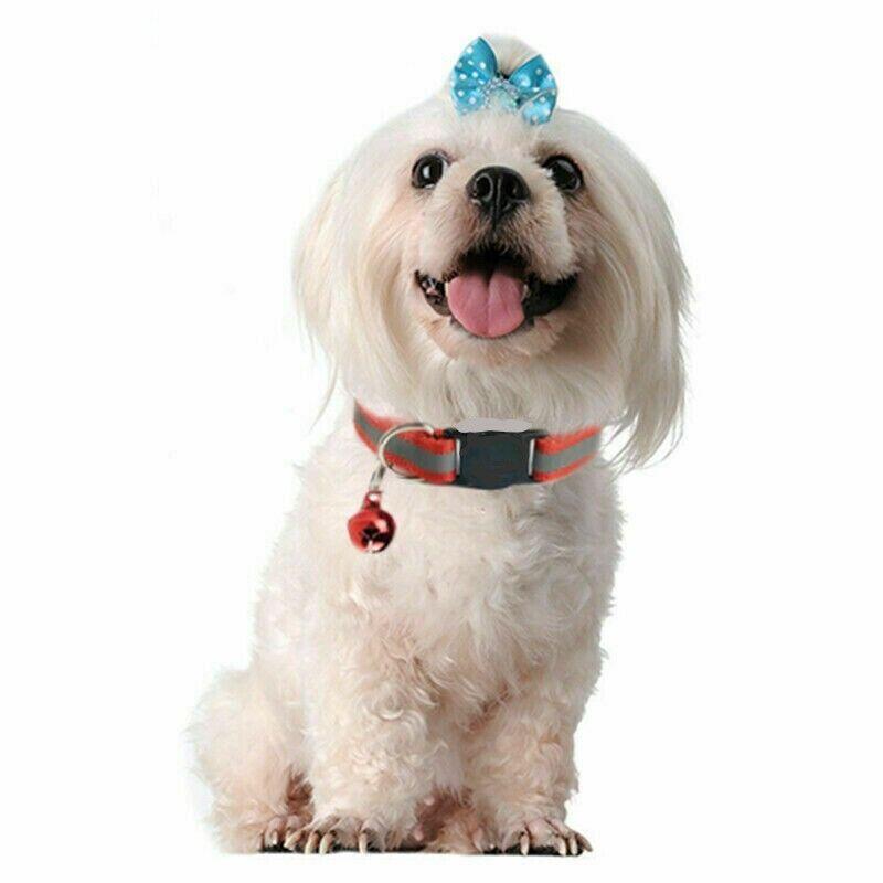 Small Dog Cat Collar ~ CUTE ~ Buckle Bell Reflective Stripe Kitten Puppy Collars