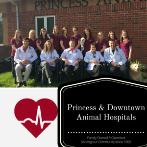 Come FEEL The Difference! Princess & Downtown Animal Hospitals