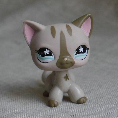 Littlest pet shop Pale Grey Short hair Kitty Cat  LPS mini Action Figures #468