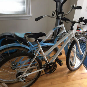 Selling 2 great bikes for cheap! Excellent condition Gatineau Ottawa / Gatineau Area image 1