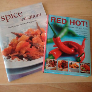 Hot and Spicy Food Cookbooks Like New Kingston Kingston Area image 1