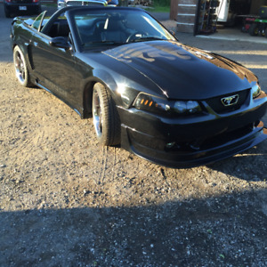 Ford mustang 2001 GT convertible