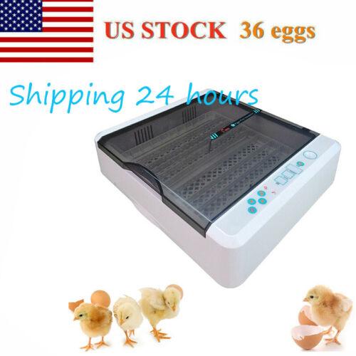 36 Digital Egg Incubators Chicken Hatcher Automatic Turning Temperature Control