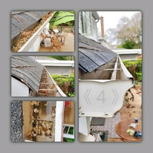 Lawn, Garden, and Eavestrough Care