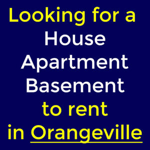 Looking for a 3 Bedroom Apartment/House/basement in Orangeville