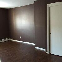 2 Large Bedroom- Heated West Saint John