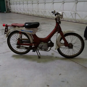 Honda Passport Moped