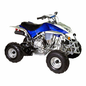 110cc KIDS ATV // 905 665 0305 with remote kill switch & limiter