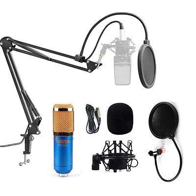 Audio Professional Condenser Microphone Mic Studio Sound Recording w/ Boom Stand