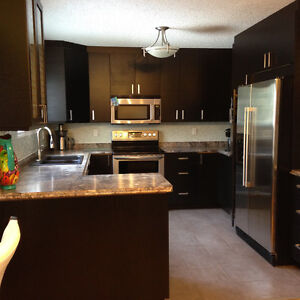 Newly Remodeled Woodlands New Kitchen and baths