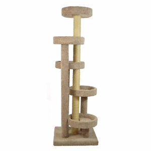 I am looking for a cat tree
